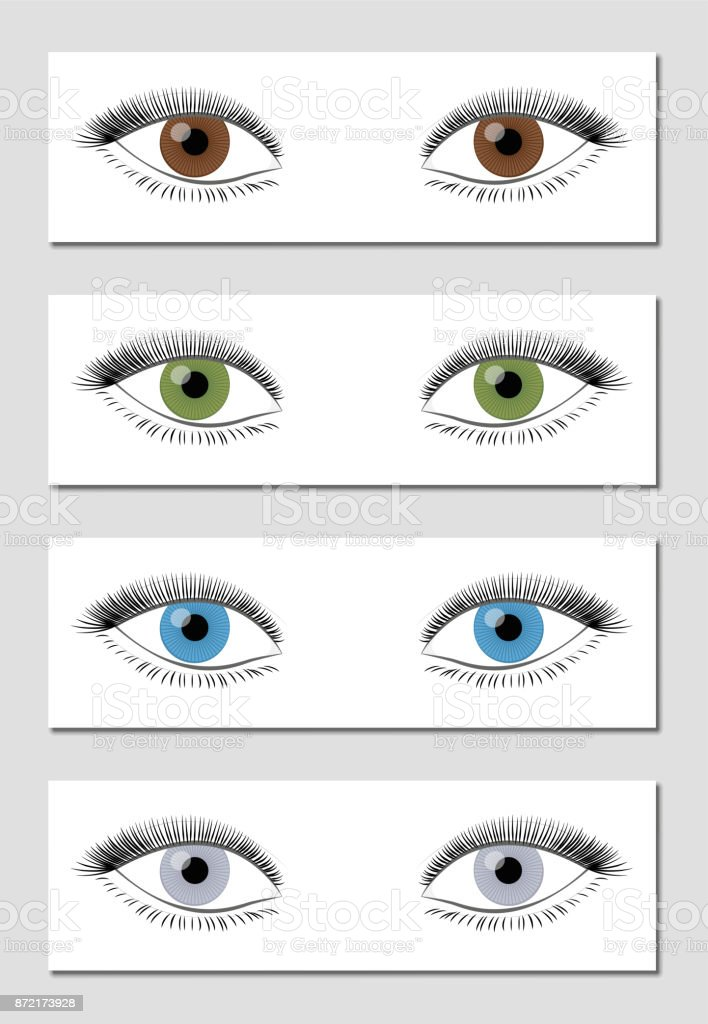 Eye Color Chart In Dominant Order Of Occurrence Brown Green Blue And
