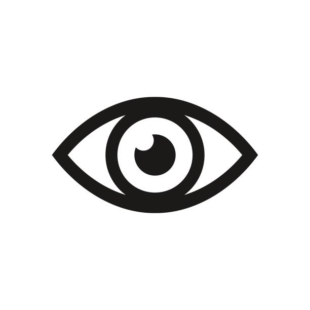 eye icon. vector illustration. - панорамный stock illustrations