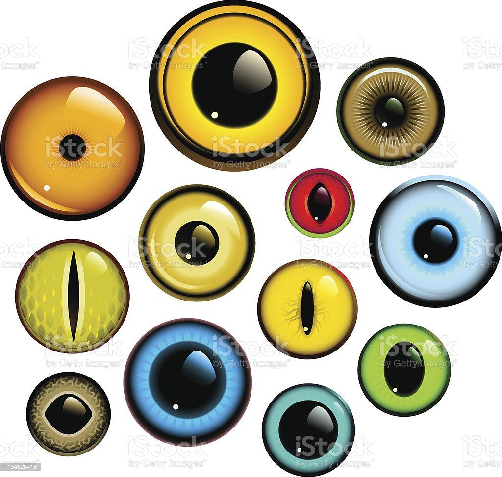 Eye Set vector art illustration
