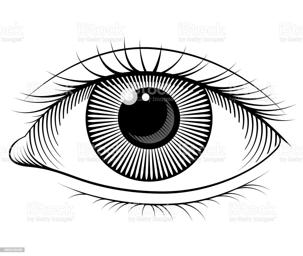 Eye vector illustration royalty-free eye vector illustration stock vector art & more images of computer graphic