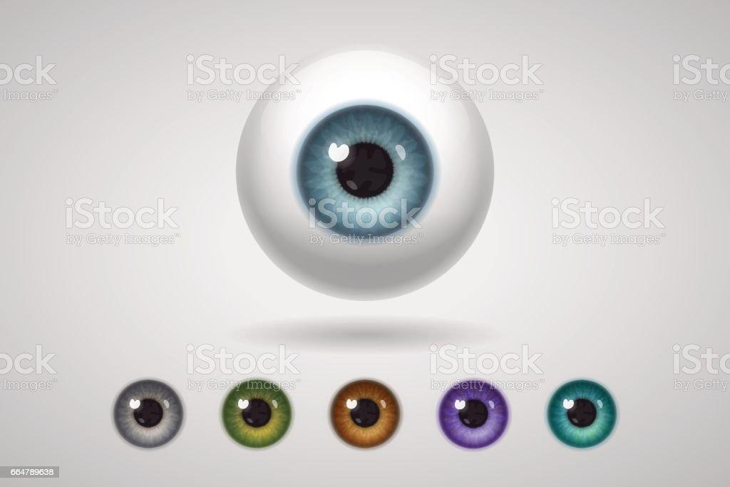 Eyeball y iris de colores - arte vectorial de Azul libre de derechos