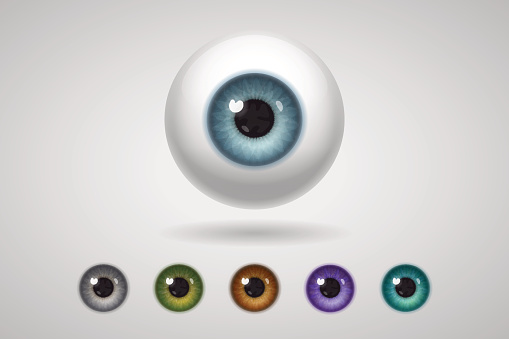 Eyeball and colored irises