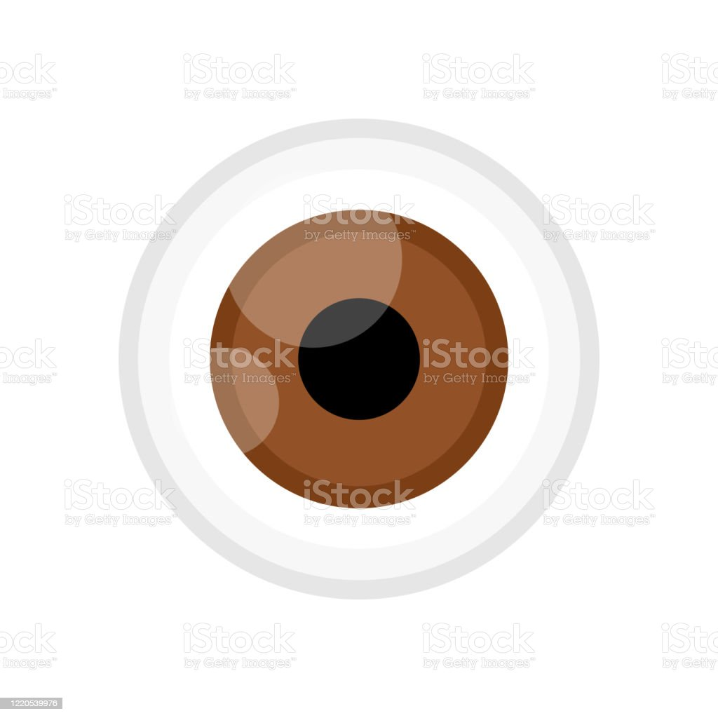 Eyeball Brown Color Isolated On White Eye Graphic Brown For Icon Eyeball Illustration For Clip Art Eyesight Symbol Eyeball Cartoon For Look View Vision And See Concept Stock Illustration Download Image