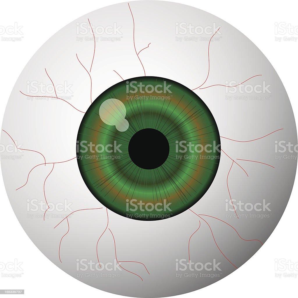 Eyeball vector art illustration