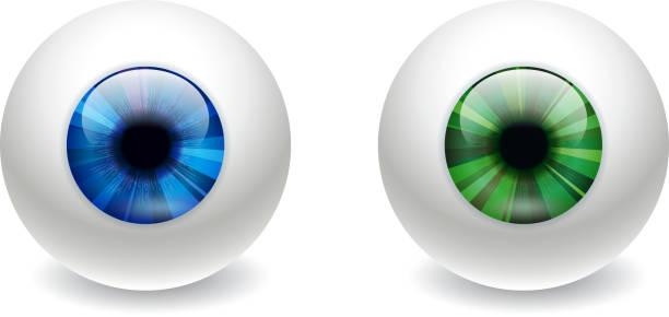 глазное яблоко - глазное яблоко stock illustrations