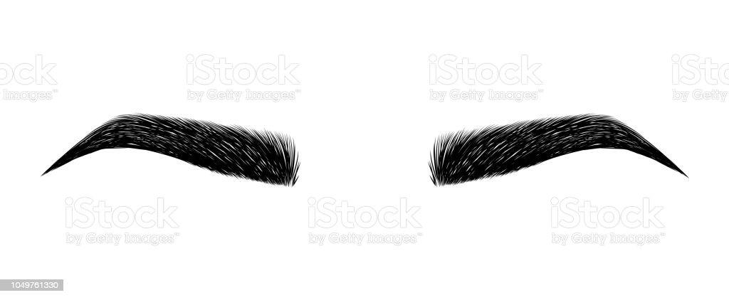 perfekt geformte Augenbrauen. permanent Make-up und Tattoo. Kosmetik für Augenbrauen. – Vektorgrafik