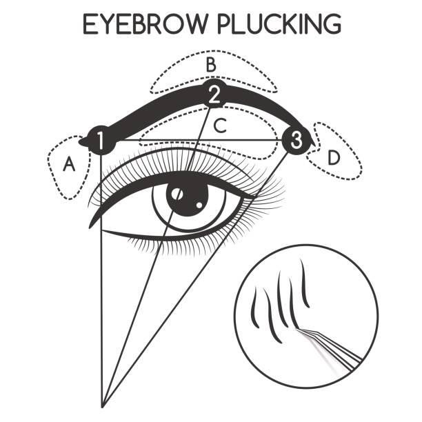 ilustrações de stock, clip art, desenhos animados e ícones de eyebrow plucking concept - puxar cabelos