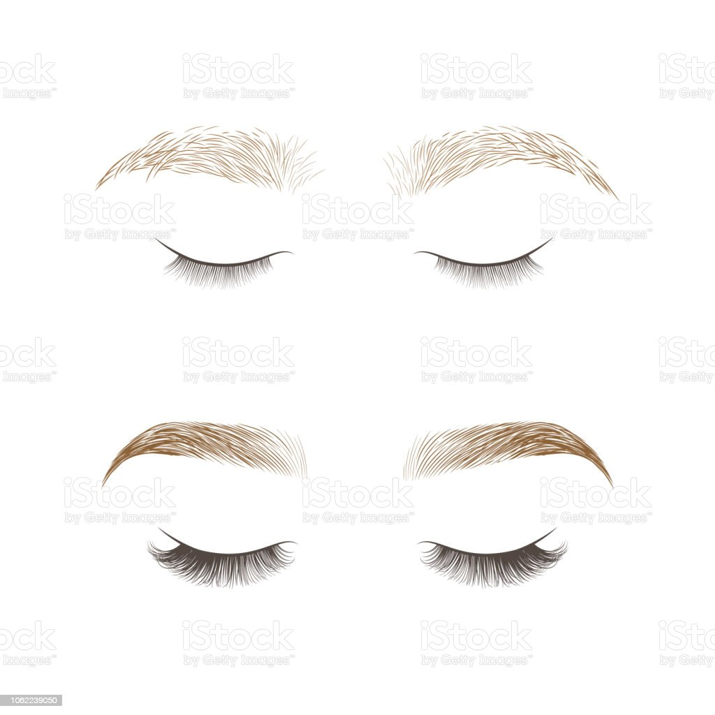 1073ffe50dc Eyebrows design and eyelashes extension. royalty-free eyebrows design and  eyelashes extension stock illustration
