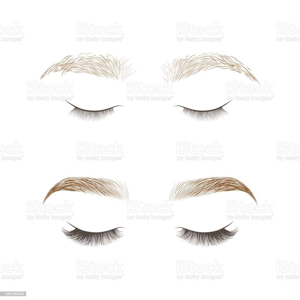 Eyebrows Design And Eyelashes Extension Stock Vector Art More
