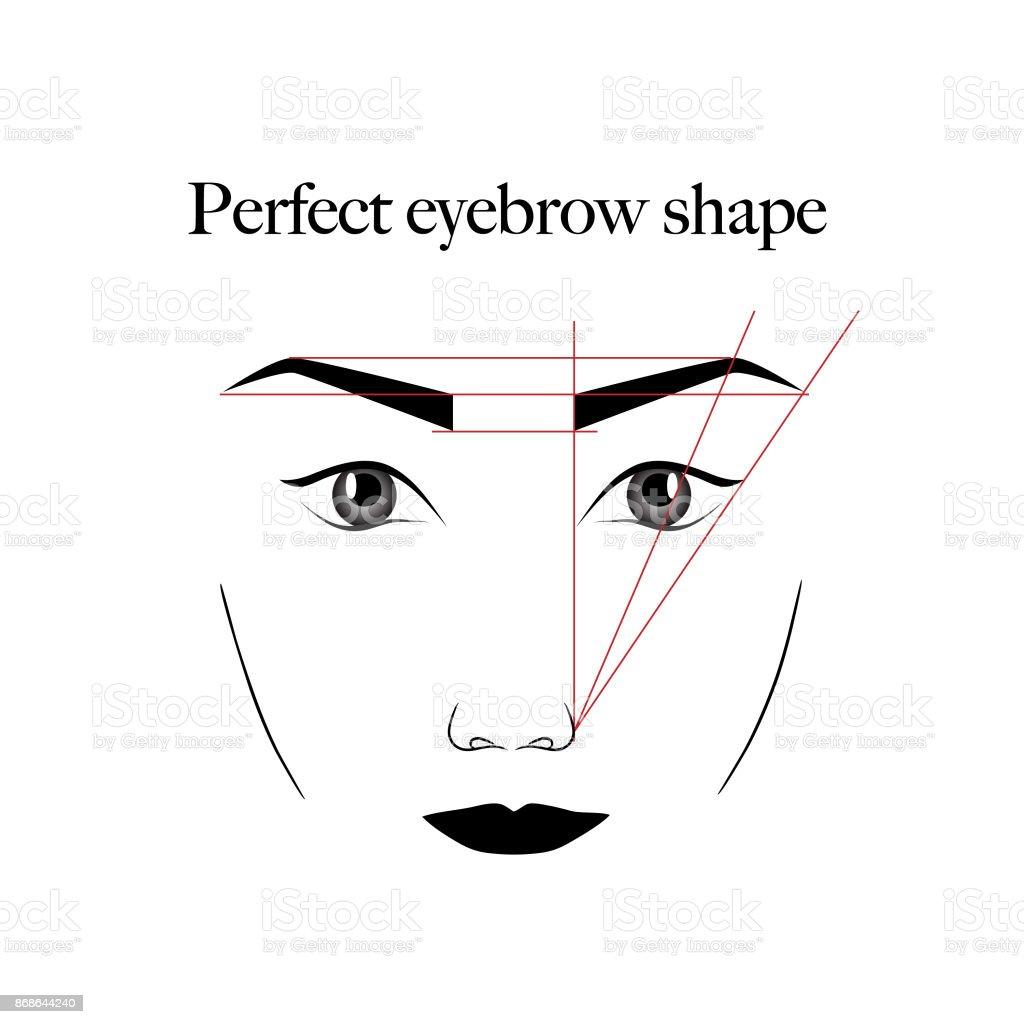 Augenbrauen-Schema – Vektorgrafik