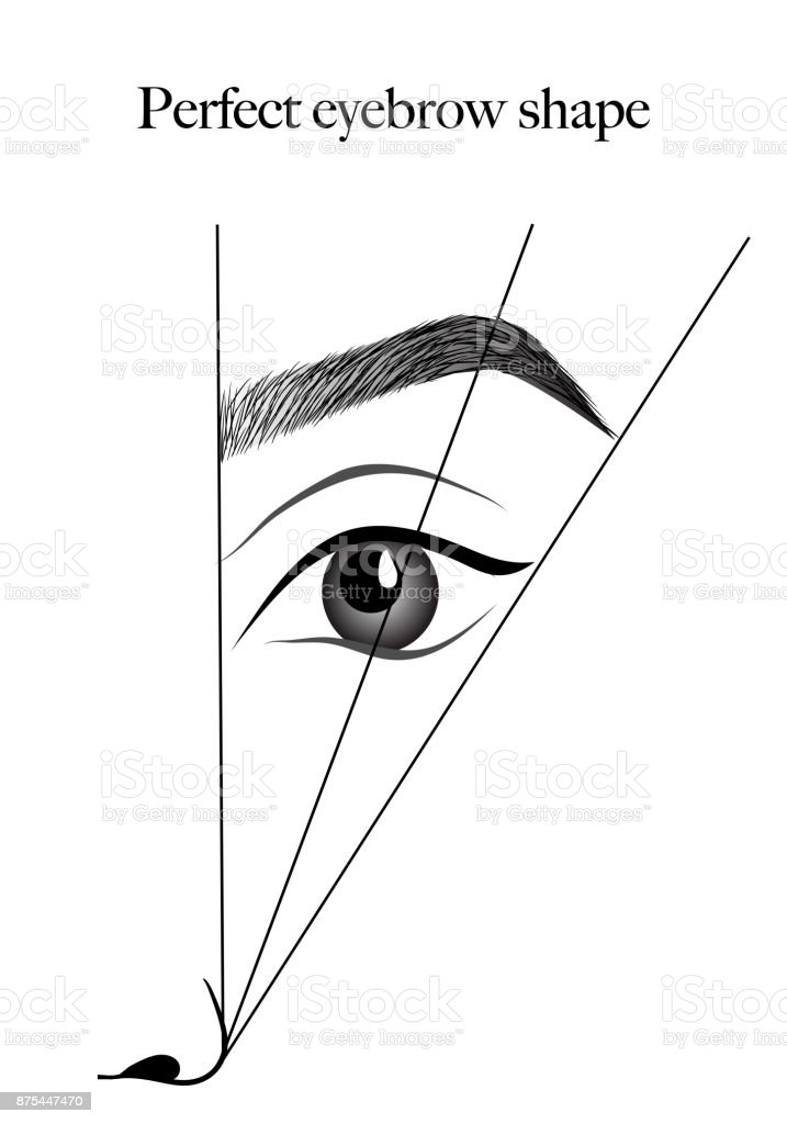 graphic relating to Eyebrow Stencils Printable titled Utmost Style and design Options No cost Printable Eyebrow Stencils Visuals