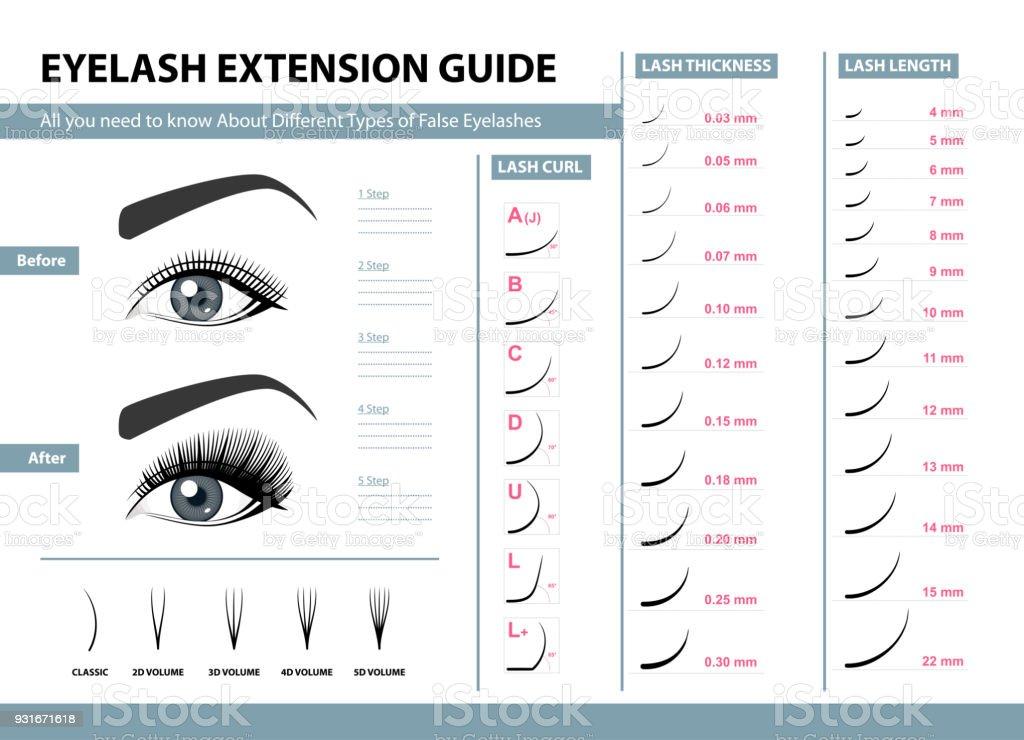 Eyelash Extension Guide Different Types Of False Eyelashes