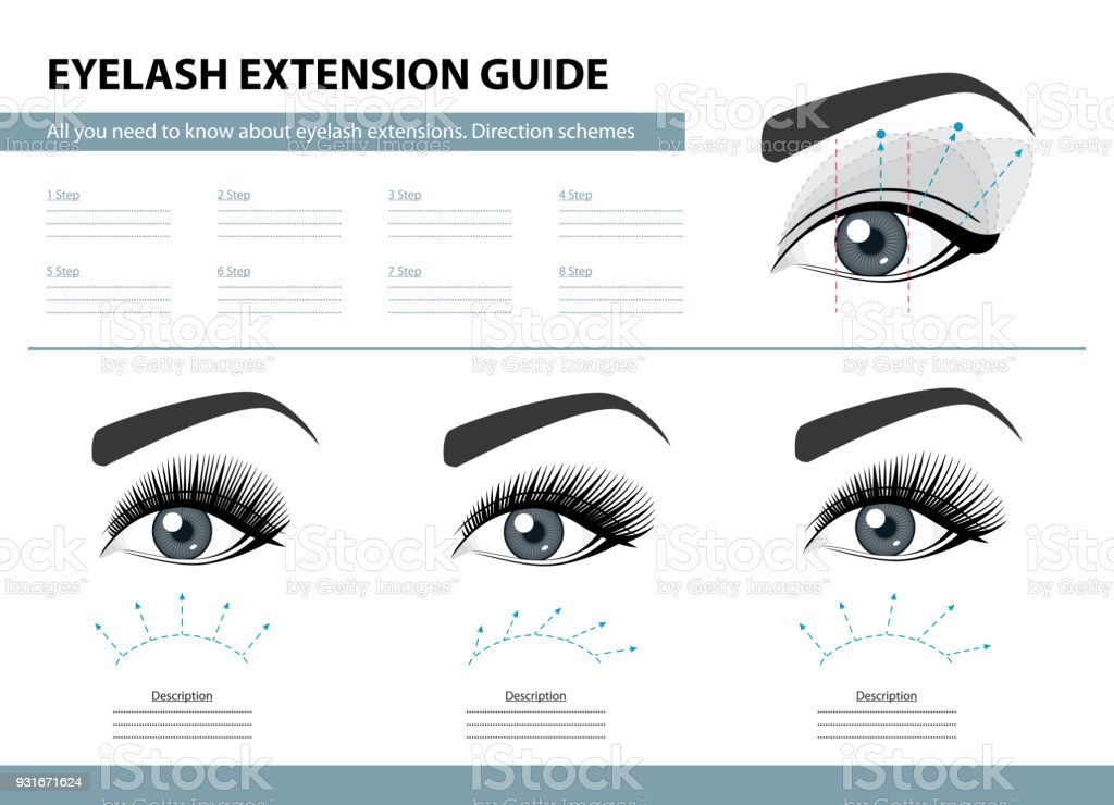 Eyelash Extension Guide Direction Schemes Tips And Tricks For Lash