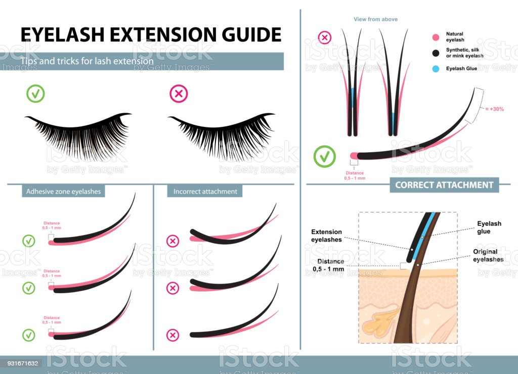 Eyelash Extension Guide Tips And Tricks For Lash Extension