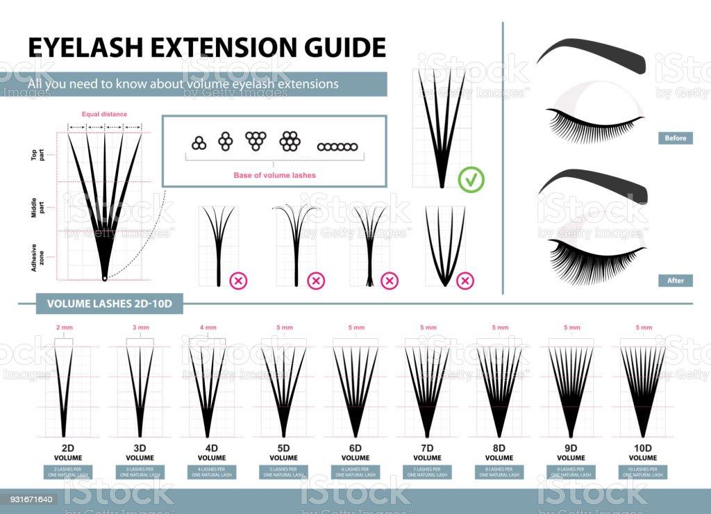 Eyelash Extension Guide Volume Eyelash Extensions 2d 10d Volume Tips