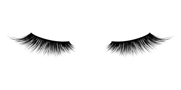 睫毛或睫毛向量圖示。用於睫毛膏設計的向量假長睫毛 - 睫毛 幅插畫檔、美工圖案、卡通及圖標