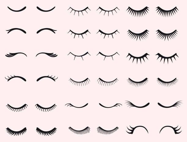睫毛設置。女人美麗閉上的眼睛。錯誤的睫毛收集。向量 - 睫毛 幅插畫檔、美工圖案、卡通及圖標