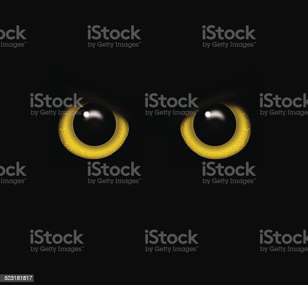 Eyes of a wild animal in the darkness vector vector id523181817?b=1&k=6&m=523181817&s=612x612&h=pwjbhq4cozps1sxdsex4vg7aoodp23ndfpqqkk0z7ow=