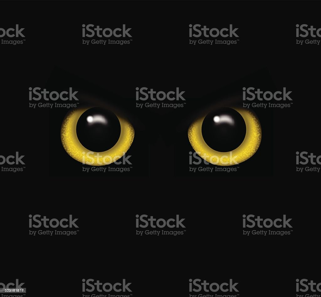 Eyes of a wild animal in the darkness vector vector art illustration