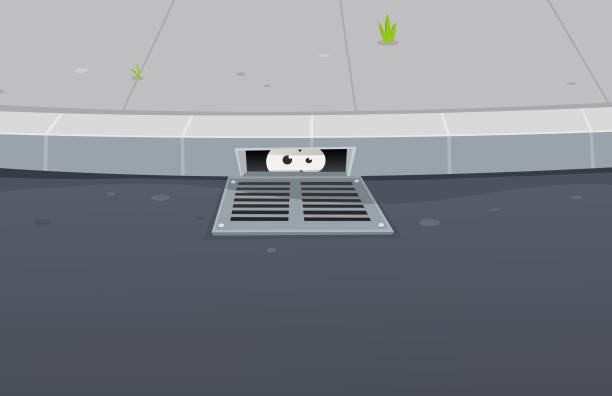 Best Gutter Illustrations Royalty Free Vector Graphics