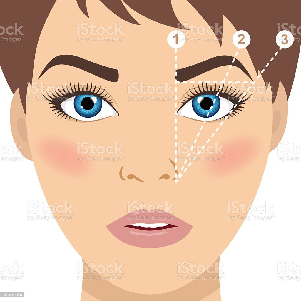 Face and eyebrow mapping. Trimming. Perfect brow shape vector scheme. – Vektorgrafik
