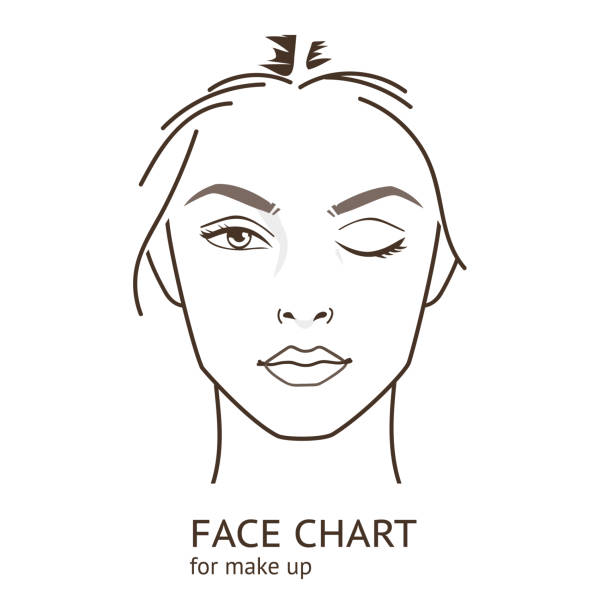 face chart - female faces stock illustrations, clip art, cartoons, & icons