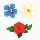 Face flowers set