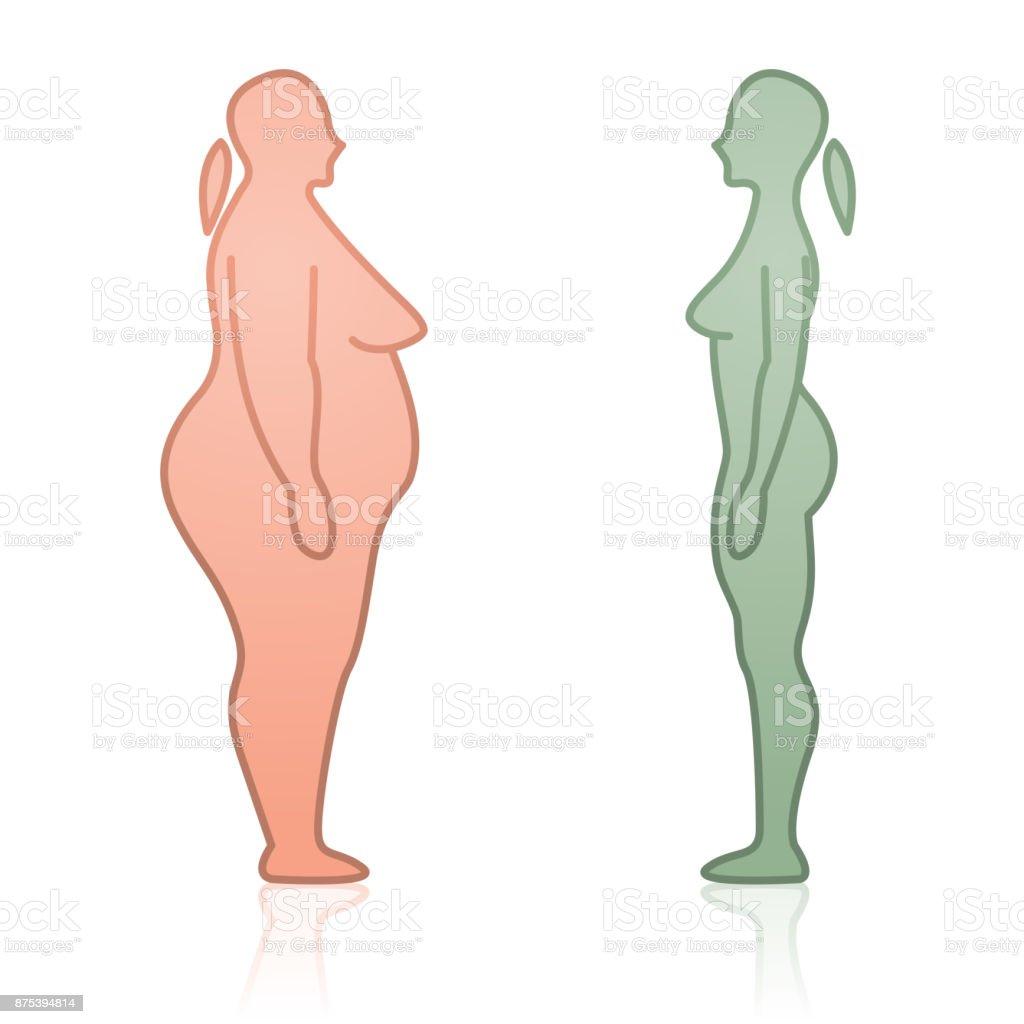 Ilustración De Siluetas Femeninas Gordos Y Flacos De Cara A