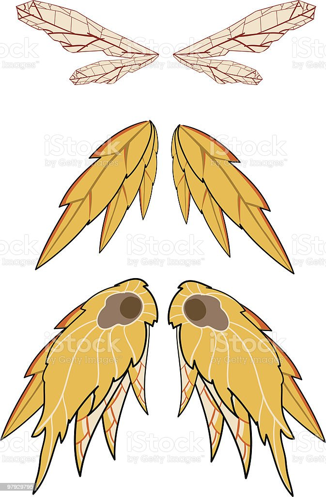 fairies of the fall wings set royalty-free fairies of the fall wings set stock vector art & more images of animal wing