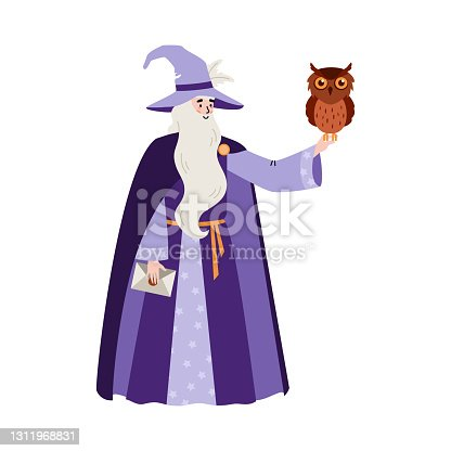 istock Fairy tale wizard or sorcerer with owl flat vector illustration isolated. 1311968831