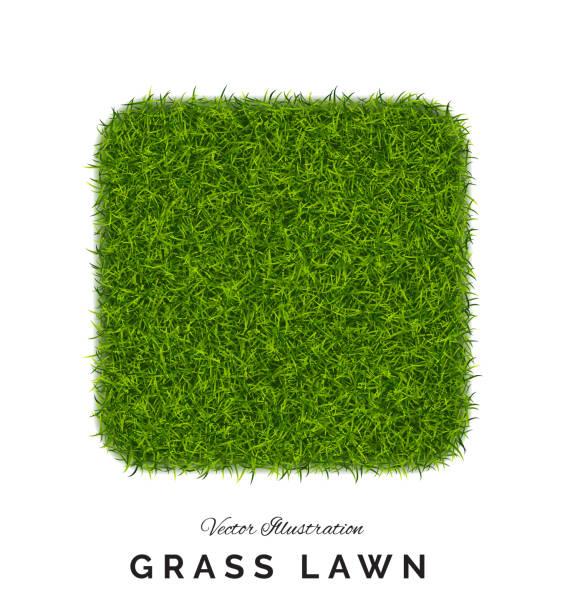stockillustraties, clipart, cartoons en iconen met nep groen gras of astroturf vierkante achtergrond geïsoleerd - gras