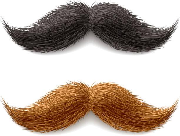 ilustrações, clipart, desenhos animados e ícones de bigodes falso - bigode