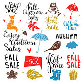 Fall, autumn sale design elements set