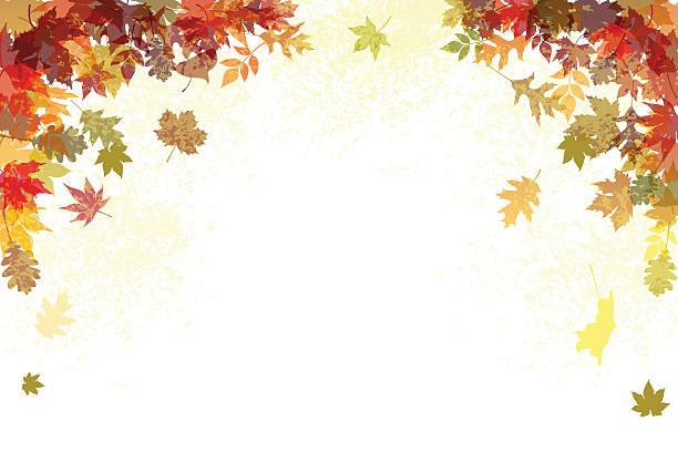 Herbst Hintergrund – Vektorgrafik