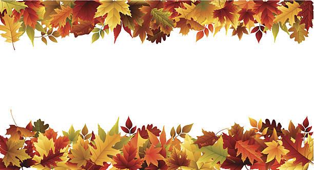 stockillustraties, clipart, cartoons en iconen met fall border - japanse vallende bladeren