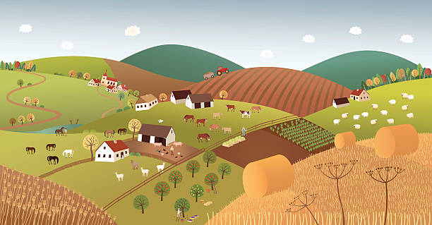 herbst farmer landschaft - herbstgemüseanbau stock-grafiken, -clipart, -cartoons und -symbole