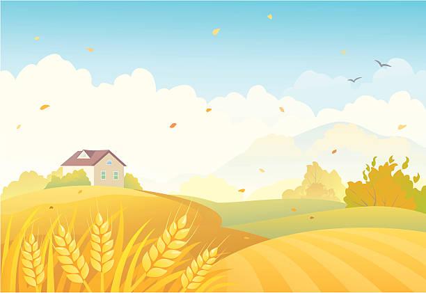 stockillustraties, clipart, cartoons en iconen met fall fields - wheat field