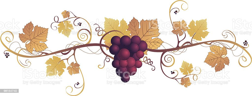 Fall Grape Design Element royalty-free fall grape design element stock vector art & more images of autumn