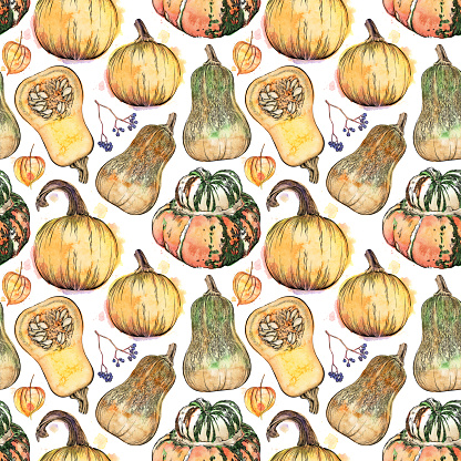 Fall Items Seamless Pattern. Vector Ink and Watercolor Drawing of Fall Pumpkins and Squash