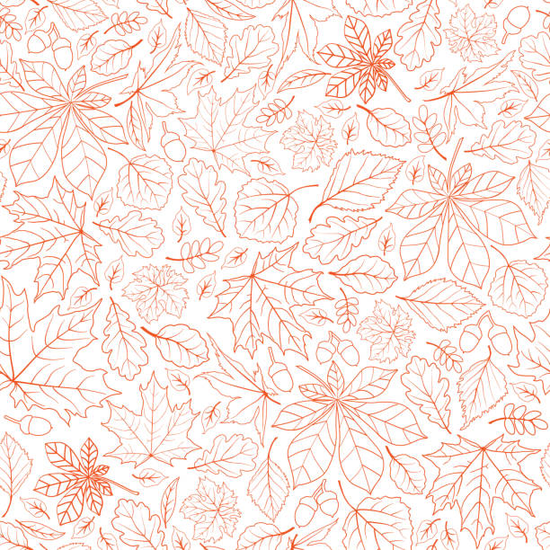 Fall leaf nature seamless pattern. Autumn leaves background. Season floral icon wallpaper vector art illustration