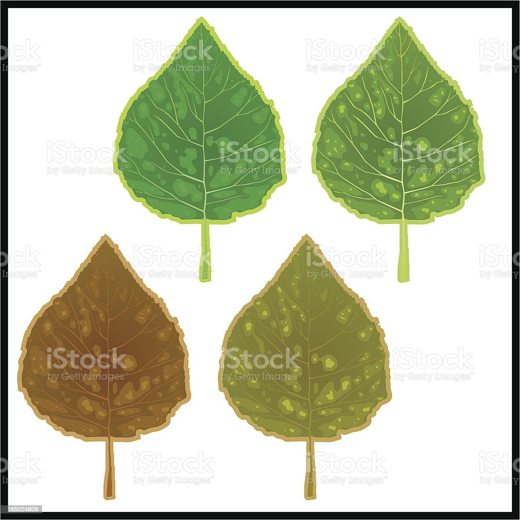 Fall leaves 01 royalty-free fall leaves 01 stock vector art & more images of autumn
