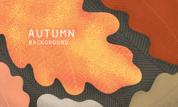 Fall leaves background Background with textured oak leaves in autumn colors. Editable vectors on layers. fall background stock illustrations