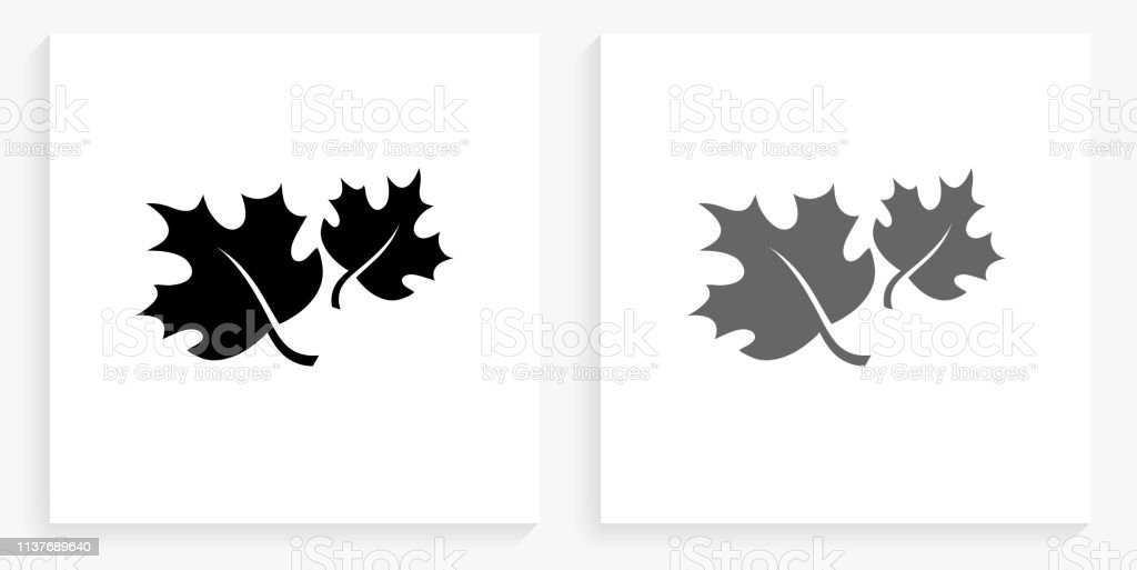 Fall Leaves Black And White Square Icon Stock Illustration Download Image Now Istock