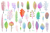 Fall Leaves clipart objects set isolated on white, transparent for making compositions. Vector design.