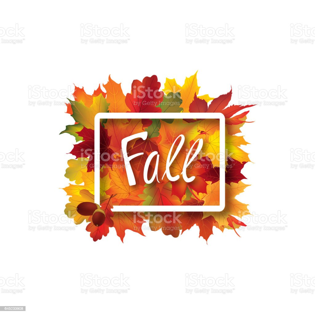 Fall Leaves Sign Autumn Leaf Frame Nature Symbol With Fall Lettering