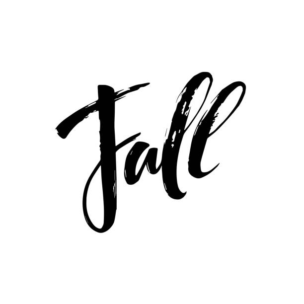 fall modern calligraph  hand drawn lettering design. autumn poster - 낱말 stock illustrations