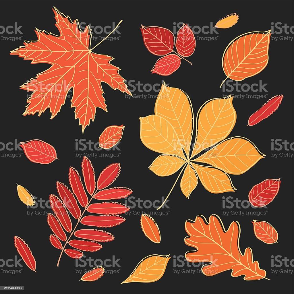 Herbst Der Blatter Skizze Design Elemente Stock Vektor Art Und Mehr