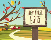Vector illustration of a Fall or Autumn Farm Fresh Eggs  themed wooden sign post. Includes hand drawn text or lettering on sign. Easy to edit.