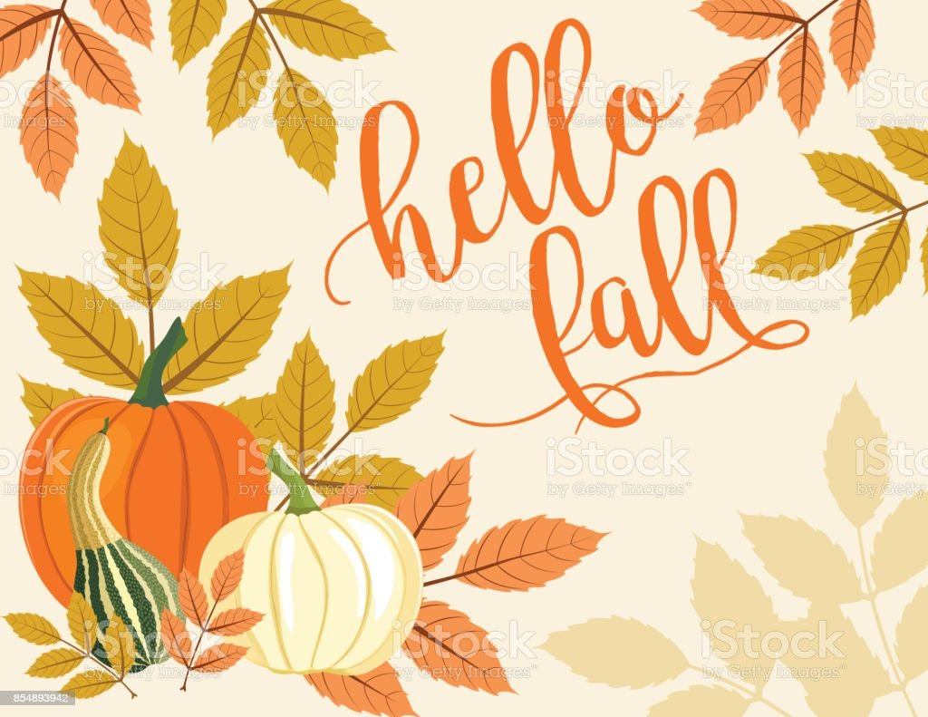 Fall Pumpkin Background with Autumn Leaves, hello fall Text vector art illustration