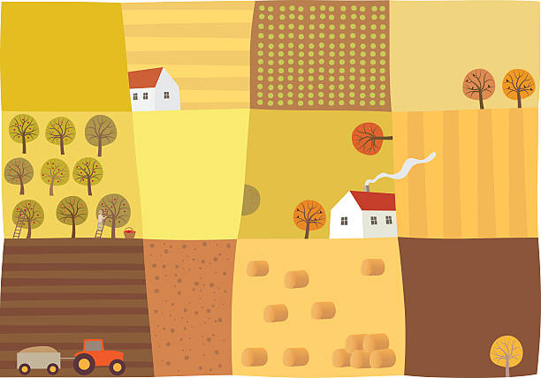 herbst-saison - aerial overview soil stock-grafiken, -clipart, -cartoons und -symbole